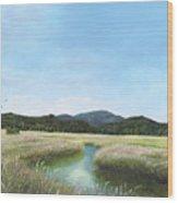 California Wetlands Wood Print