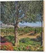 California Wine Country Wood Print