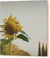 Californian Tuscany Wood Print