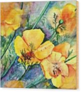 California's Poppies Wood Print
