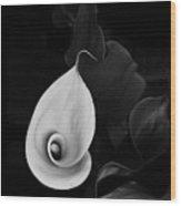 Calla Curves Wood Print