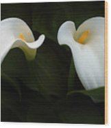 Calla Duo Wood Print