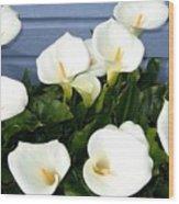 Calla Lilies- Oregon Wood Print