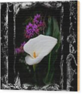 Calla Lily Splash Wood Print