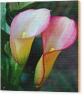 Calla Lily Twins Wood Print
