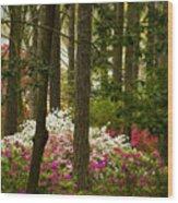 Callaway Gardens Spring Azaleas Wood Print