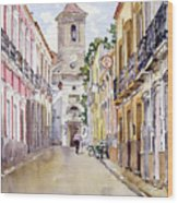 Calle Fuente Alhabia Wood Print