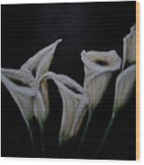 Calli Lillies In The Dark Wood Print
