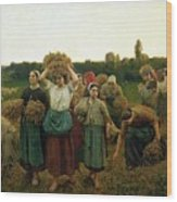 Calling In The Gleaners Wood Print