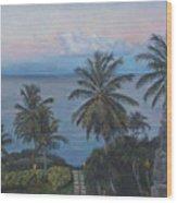 Calm In The Carribean Wood Print