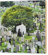 Calvary Cemetery From Above Wood Print