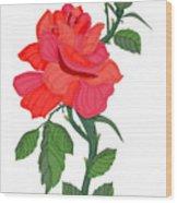 Calypso Rose Wood Print