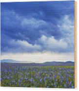 Camas Glory At Camas Prairie In Idaho Wood Print