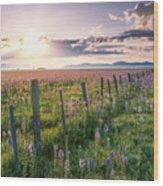 Camas Marsh 3 Wood Print