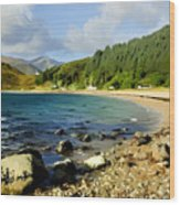 Camasnacroise Loch Linnhe Wood Print