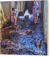 Cambodian Boys Netting Fish Wood Print