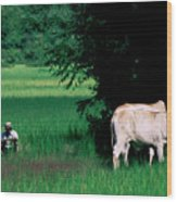 Cambodian Farmer Wood Print