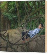 Cambodian Jungle Swing Wood Print