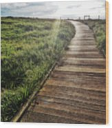 Cambria Boardwald Wood Print