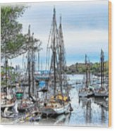 Camden Bay Harbor Wood Print