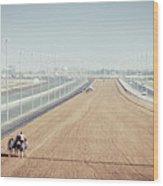 Camel Racing Track In Dubai Wood Print