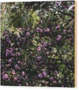 Camellia Tree Wood Print