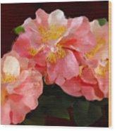 Camellias 1cmods1b Digital Painting Gulf Coast Florida Wood Print