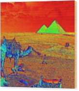 Camels At Giza Wood Print