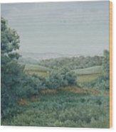 Camillus Field Wood Print