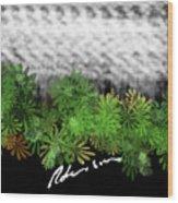 Camo -flower-range Wood Print