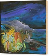Camogli By Night In Italy Wood Print
