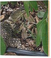 Camouflage Artist  Wood Print