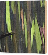 Camouflage Wood Print