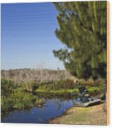 Camp Holly On The St Johns River In Florida Wood Print