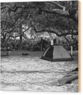 Camp Under Live Oaks Wood Print