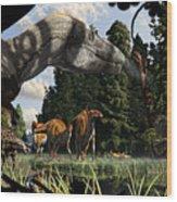 Campanian Montana landscape Wood Print