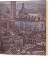 Campanile And Cathedral In Siena Italy Antique Matte Wood Print
