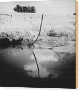 Campaspe River In Black And White Wood Print