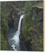 Campbell River Rain Forest Falls Wood Print