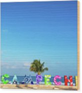 Campeche Sign And Sea Wood Print