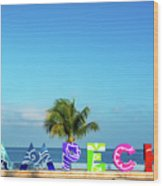 Campeche Sign And Sea View Wood Print