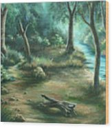 Camping At Figueroa Mountains Wood Print