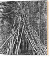 Camping Wood Print