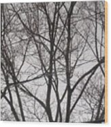 Campus Sky Wood Print