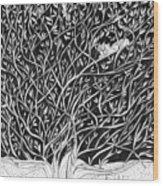 Can You See Me? Wood Print