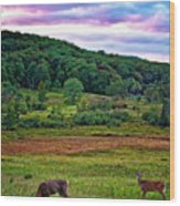 Canaan Valley Evening Wood Print