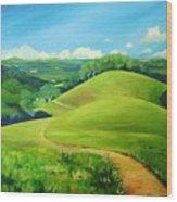 Canada Del Oro Ridge Wood Print