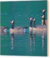 Canada Geese 2 Wood Print