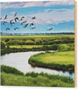 Canada Geese Entering Idaho's Teton Valley Wood Print