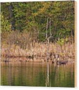 Canada Goose Couple Wood Print
